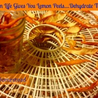 When Life Gives You Lemon Peels Dehydrate Them!