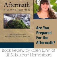 Book Review & Giveaway:  Aftermath A Story of Survival by LeAnn Edmondson
