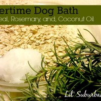 Summertime Dog Bath with Oatmeal, Rosemary and Coconut Oil