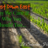 Feast Down East - Why We Care & Why You Should Too!