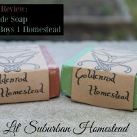 Product Review:  2 Boys 1 Homestead Soaps