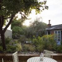 limetree-garden_0051