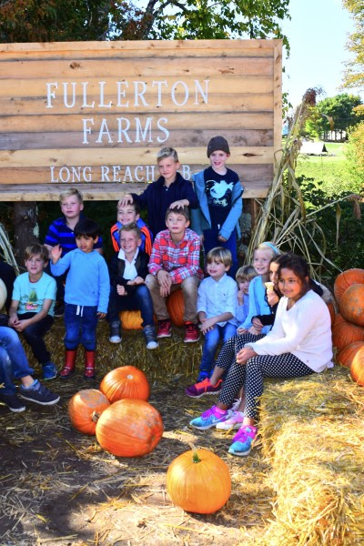 The Pumpkin Patch Gang!