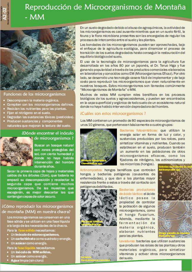 Ficha: Biofertilizantes a partir de microorganismos de montaña.