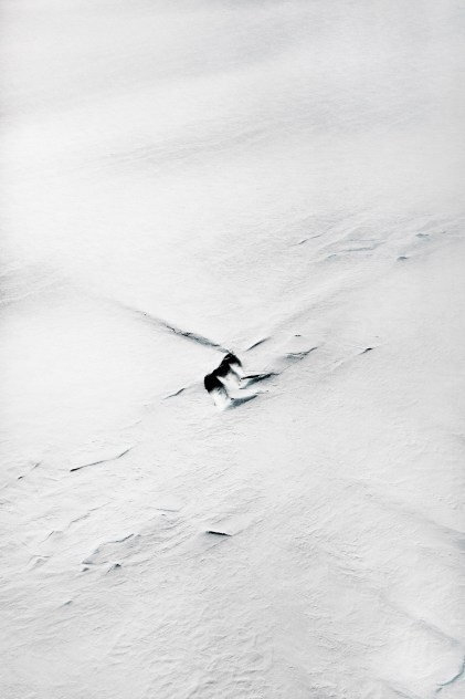 © PAOLO PELLEGRIN/MAGNUM PHOTOS, Aerials taken from a NASA P3 plane flying over South Peninsula A. Antarctic, Nov 2017