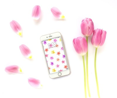 24 Free Spring Wallpapers & Backgrounds - Lines Across