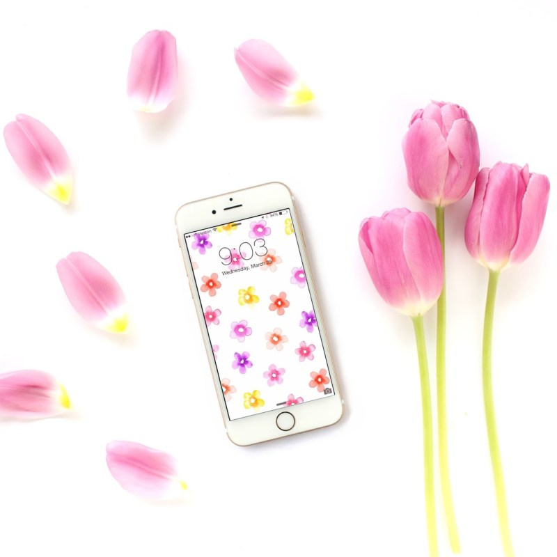 24 Free Spring Wallpapers & Backgrounds