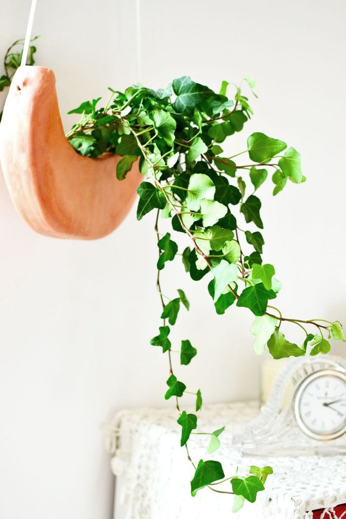 Crescent moon DIY planters made out of clay