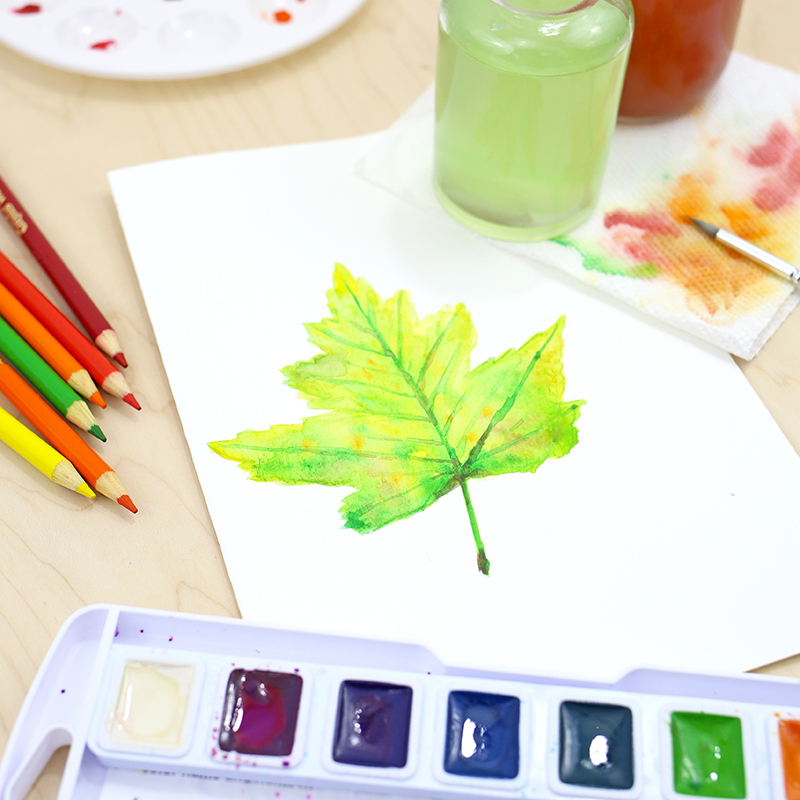 How to Paint Fall Watercolor Leaves