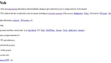 didascalia: 6 agosto 1991, online primo sito web storia