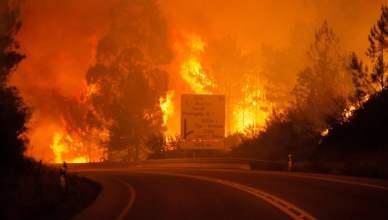 incendio-portogallo