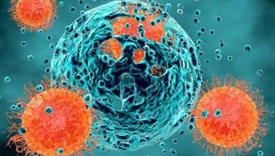 tumori e cellule