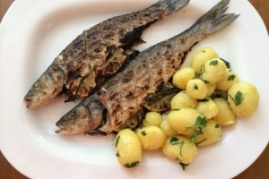 potatoes and grilled branzino