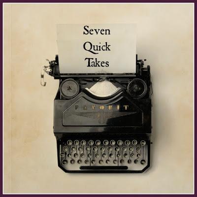 Seven Quick Takes: Books, Beautiful Books