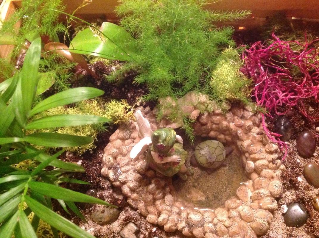 Fullsize Of Little Fairy Garden