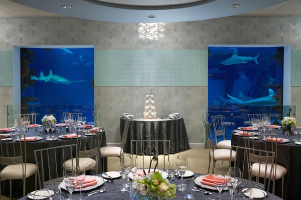 Seascape Ballroom Wedding Reception Mandalay Bay