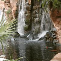 Flamingo – Paradise Falls