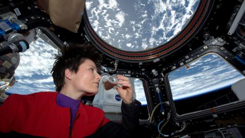 ISS-43_Samantha_Cristoforetti_drinks_coffee_in_the_Cupola