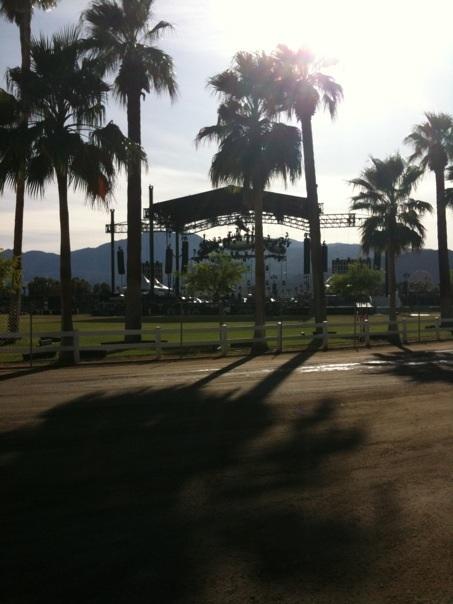 sun and palms