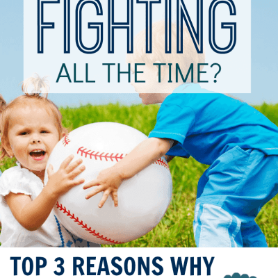 Sibling Fighting: The Top 3 Causes for This Behavior & How to Fix It