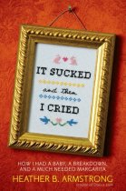 It Sucked and Then I Cried book cover