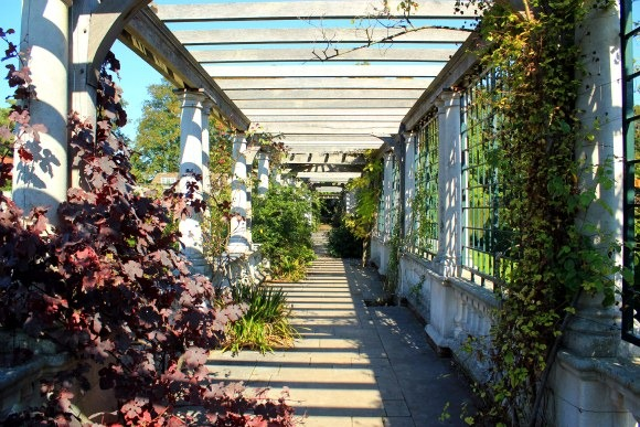 Hampstead Pergola with trees and bushes overgrowing on all corners