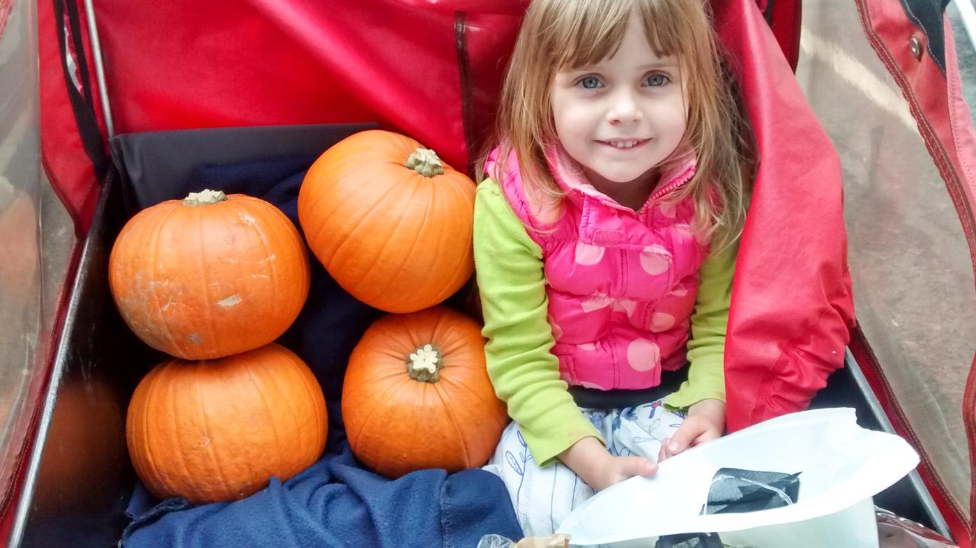 Pumpkins in a cargo bike
