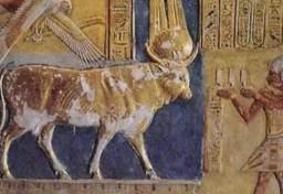 El faraón adorando al Toro MNEVIS, o, MERUR