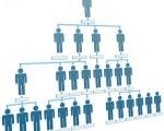 estructuras-organizaciones2