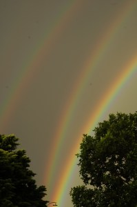 Four Ringed Ranbow