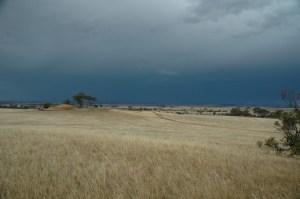 Dark Stormy Sky - Dumbleyung Wheatflields