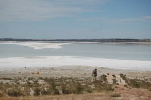 Me Metal Detecting and the immense sparce of Lake Dumbleyung