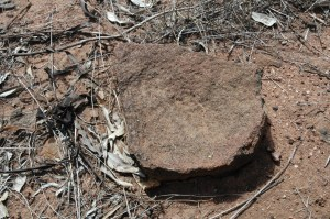 Aboriginal Grinding Stone - For Grinding Native Grains into Flour etc