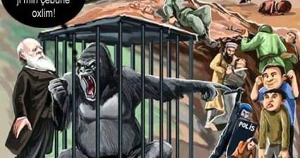 darwin goril Kopie