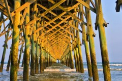 piers-folly-island-0793