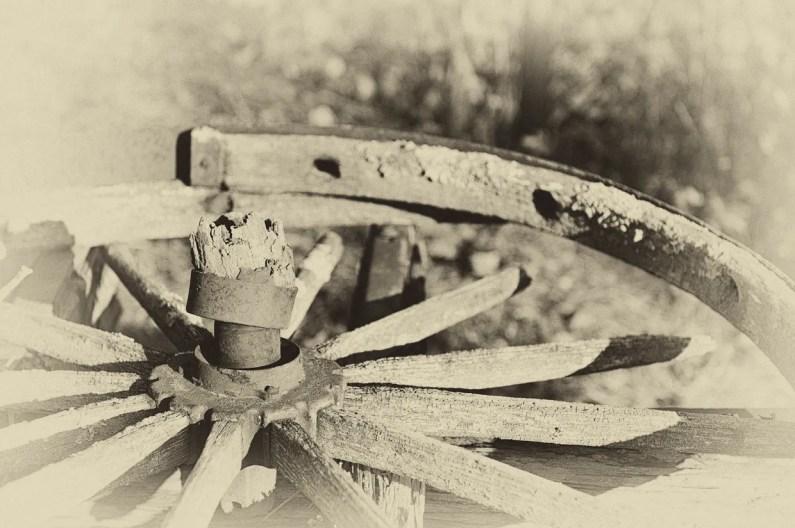 wheel-2482