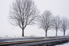medford-snow-4581