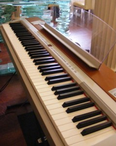 Yamah P-155 Digital Piano