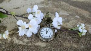 pocket-watch-1637392_960_720