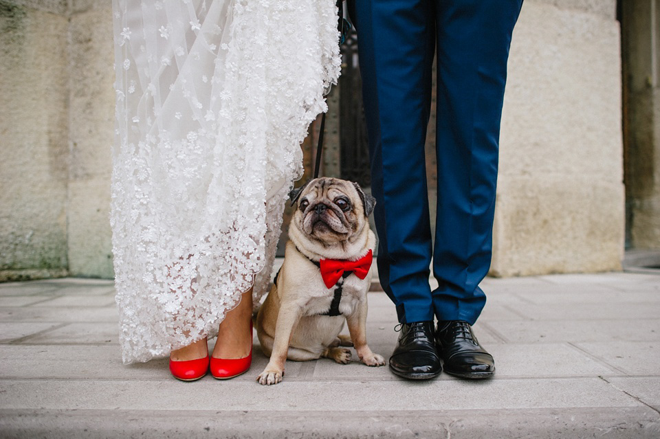 A Pretty Silk Petal Covered Wedding Dress and Pug in a Red Bow Tie