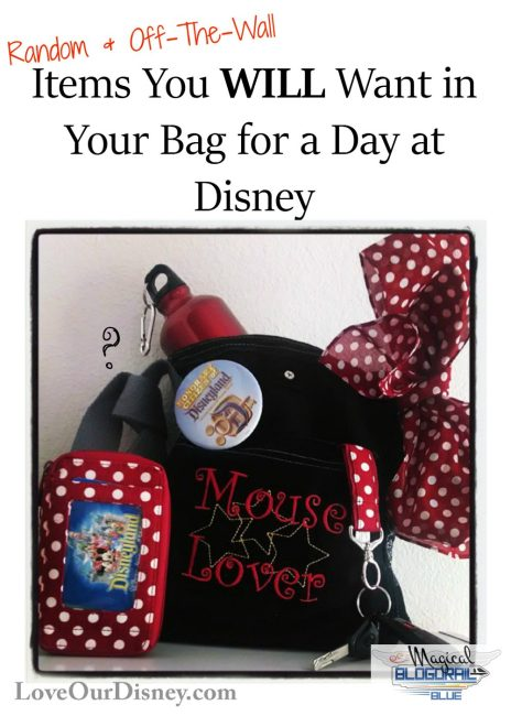Random & Off The Wall Items You Will Want In Your Disney Park Bag