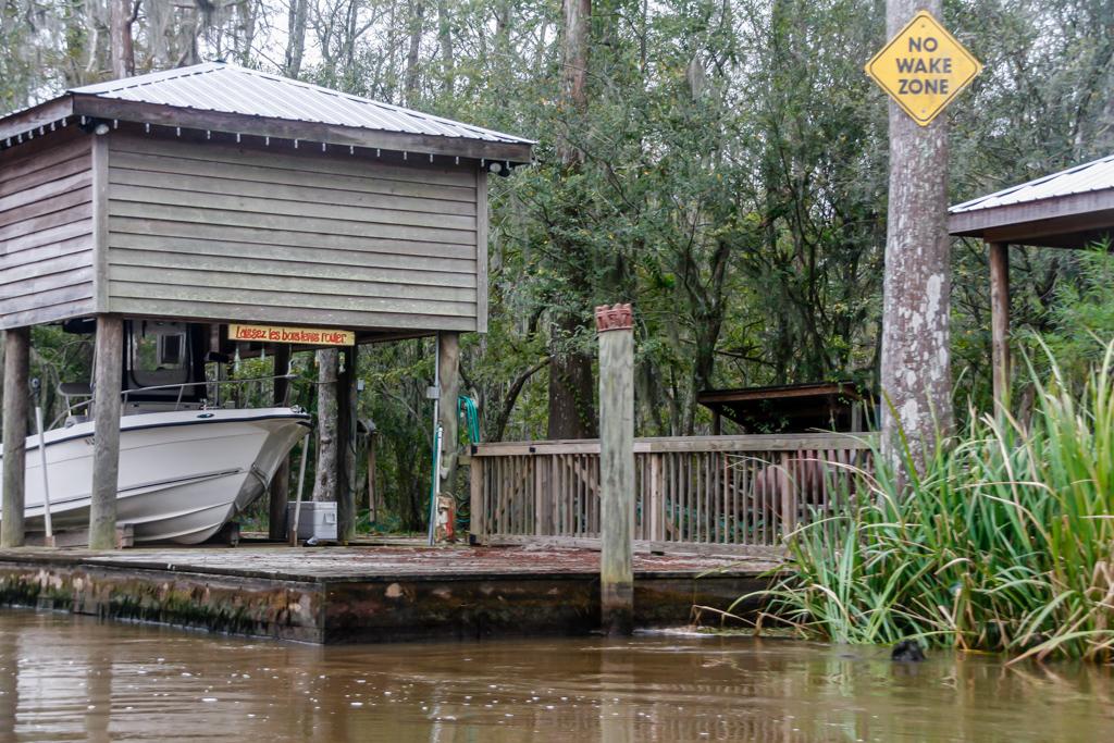 honey island swamp louisiana camps-3