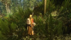 Relaxing Grass On Skyrim Technical Support Loverslab Grass On Steroids Sse Skyrim Grass On Steroids Fps Drop Help