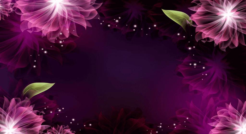 Miniature Schnauzer Home Page Purple Background