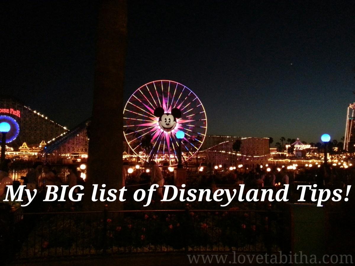 My BIG list of Disneyland Tips!!