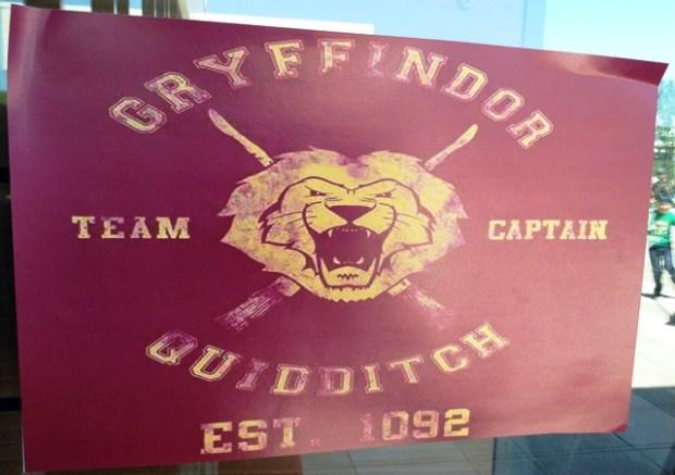 griffindor-quidditch