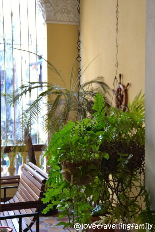 Patio, Casa Israel, Havana