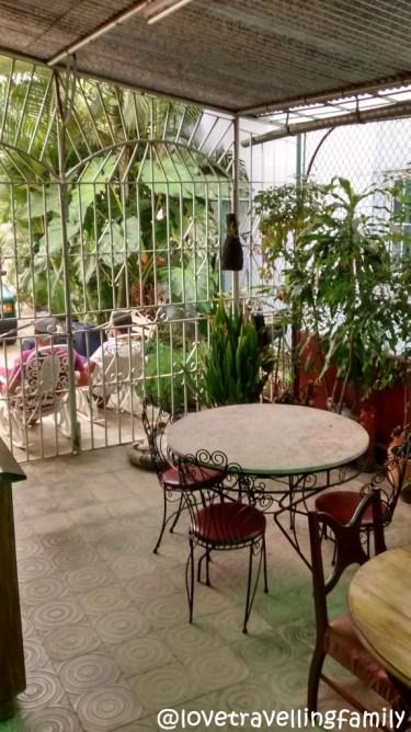 Patio, Hostal Jenny Lourdes, Havana