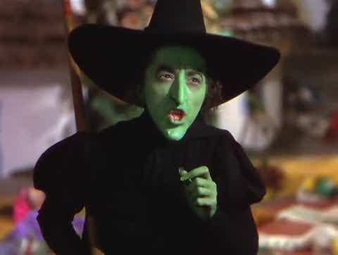 3524911-wizard-of-oz-wicked-witch