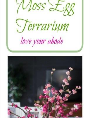 moss egg terrarium-loveyourabode